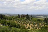 イタリア、トスカーナ — ストック写真