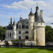 France, Loire Valley — Stock Photo #51186911