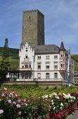 Germany, Rhine Valley — Stok fotoğraf