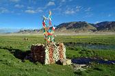 China, Tibet — Stock Photo