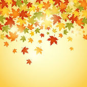 Autumn background with leaves vector illustration — Stock Vector