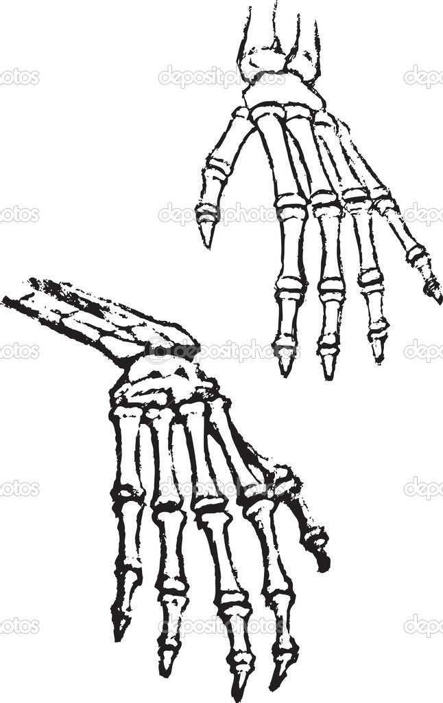 hand anatomy coloring pages - photo#25