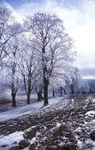 Roads in the winter landscape — Stockfoto