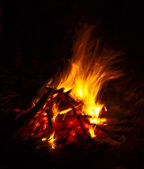 Flames in campfire at the dark night — Stock Photo