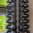 Dumb bells in a fitness studio — Stock Photo