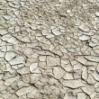 Close-up of cracked soil ground in the dry season — Stock Photo