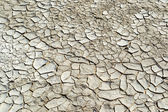 Close-up do solo rachado à terra na estação seca — Fotografia Stock