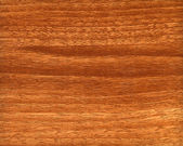Background of wood texture — Stock Photo