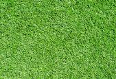 Green grass background — Стоковое фото