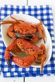 Сrabs — Stock Photo
