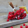 Red berries of viburnum — Stock Photo