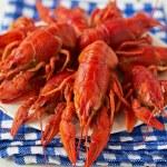 Boiled crayfish — Stock Photo