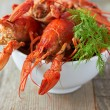 Crayfish — Stock Photo #36332181
