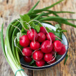 Fresh green onion and radishes — Stock Photo
