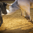 Stock Photo: Brave bull chasing horse
