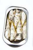 Canned sardines in vegetable oil open isolated on a white background — Foto Stock