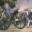 French troops firing cannon on the battlefield — Stok fotoğraf