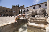 Middle-aged man cooling in the fountain gate of Jaen Baeza — Stock Photo