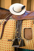 Detail of chopper hat or castorena on the saddle of a horse's picardor — Stock Photo