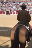 Bullfighter on horseback spanish — Stockfoto