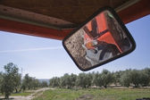 Reflection in a mirror of a tractor in a field of olive trees — Stock Photo