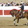 Stock Photo: Diego Ventura, bullfighter on horseback spanish