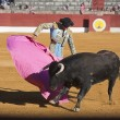 Stock Photo: Bullfight in Baezto new values of Andalusibullfighting schools