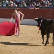 Bullfight in Baeza to the new values of the Andalusia bullfighting schools — Stock Photo