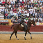Alvaro Montes, bullfighter on horseback spanish witch garrocha (blunt lance used on ranches), Coso de la Alameda — Stock Photo #34489065