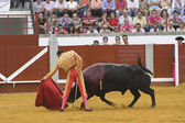 The Spanish Bullfighter Enrique Ponce bullfighting with the crutch in the Bullring of the Pozoblanco — Stock Photo