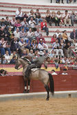 Alvaro Montes, bullfighter on horseback spanish giving the spectators — Foto Stock