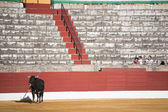 Capture of the figure of a brave bull in a bullfight, Spain — Stockfoto