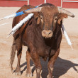 Stock Photo: Brave bull in bullfight