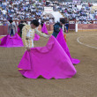Bullfighter with the Cape before the Bullfight — Stock Photo