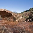 Roman bridge Piélago Linares, Jaen province, Andalusia, Spain — Stock Photo