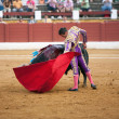 Bullfight at Andujar bullring, Jaen — Stock Photo
