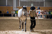 Equestrian test of morphology to pure Spanish horses — Stockfoto