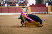 The Spanish bullfighter Sebastian Castella after being caught by the bull — Stock Photo