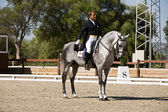 Rider competing in dressage competition classic — Stock Photo