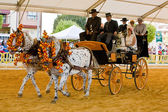 Carriage pulled by two horses — Stockfoto