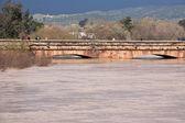 Rzeki Gwadalkiwir, przechodzącej przez Andújar, jaen prowincji, Andaluzja, Hiszpania — Zdjęcie stockowe