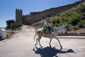 Elder walking in donkey close to the Tower of the Barbacana, Sabiote — Stock Photo