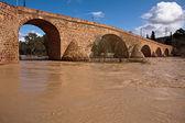 Guadalquivir River passing through Andujar — Stock Photo