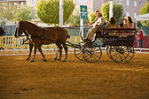 Carriage pulled by two horses — Stock fotografie