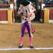 Bullfighter at the paseillo or initial parade — Stock Photo