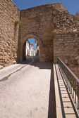 Mudejar door in summer time — Stockfoto