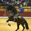 Miguel Angel Martin, bullfighter on horseback spanish — Stock Photo