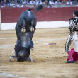 Постер, плакат: Spanish bullfighter Ivan Fandi