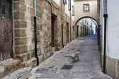 Typical Street of the world heritage city in Baeza, Street Barbacana next to the clock tower, — Стоковое фото