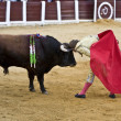 Bullfighter Manuel Benitez El Cordobes  put your head between the horns of a bull in act of courage — Stock Photo